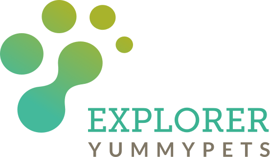 Explorer, the only market research platform dedicated to pet industry brands